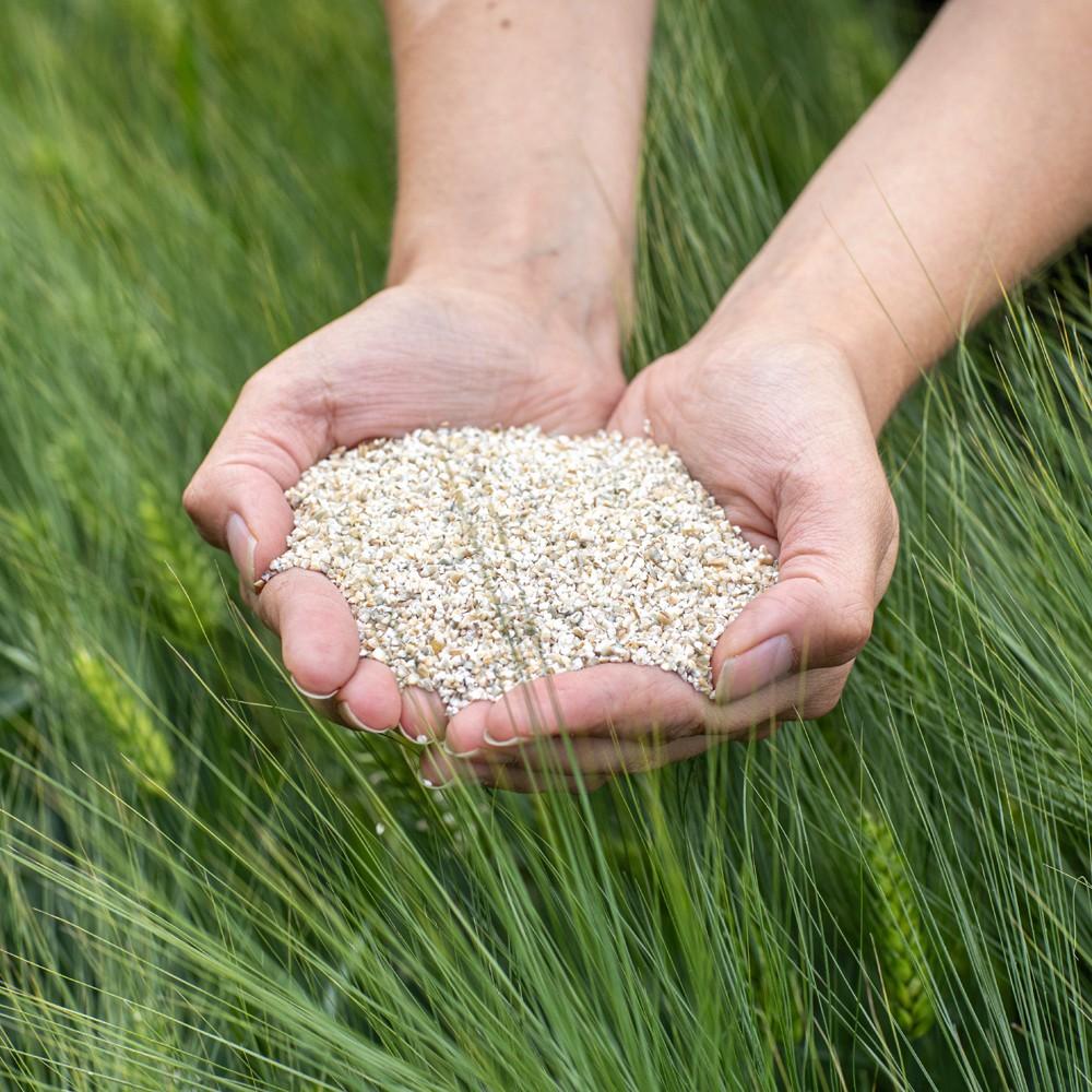 ohrasuurimot barley grits